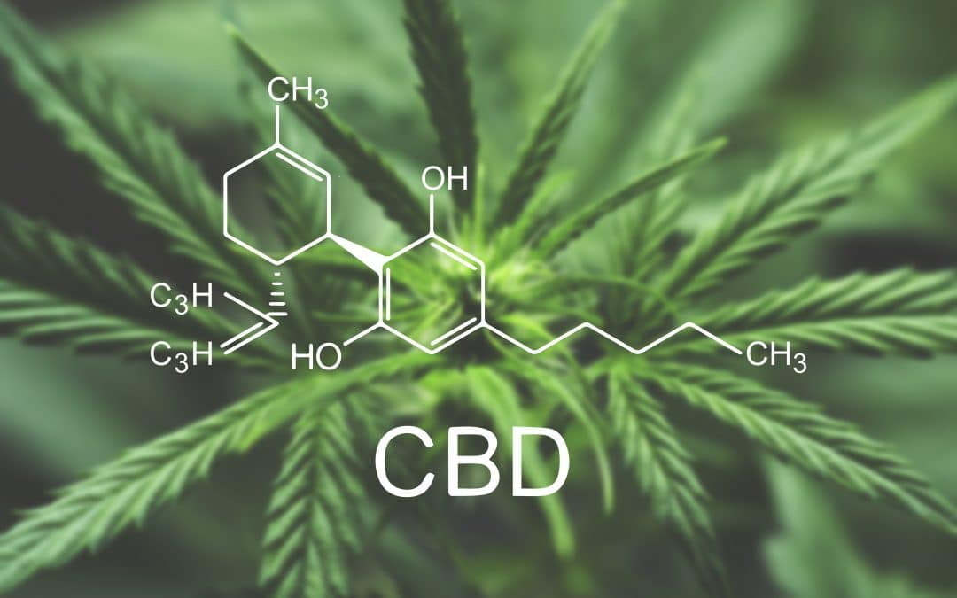What is synthetic CBD? The Rise of Pharmaceutical CBD