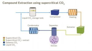 cbd-co2-critical-extraction-diagram