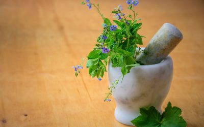 The Top Five Most Powerful Food Supplements in the World