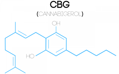 What is CBG and How Does it Compare to CBD?